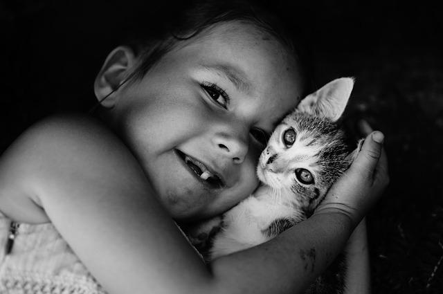 Czego uczą dzieci i koty